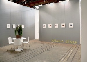 Natasha Bieniek installed at Sydney Contemporary 2015