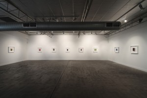 The Skeleton Field (installation view), 2012
