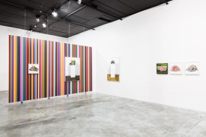Precipice Installation View